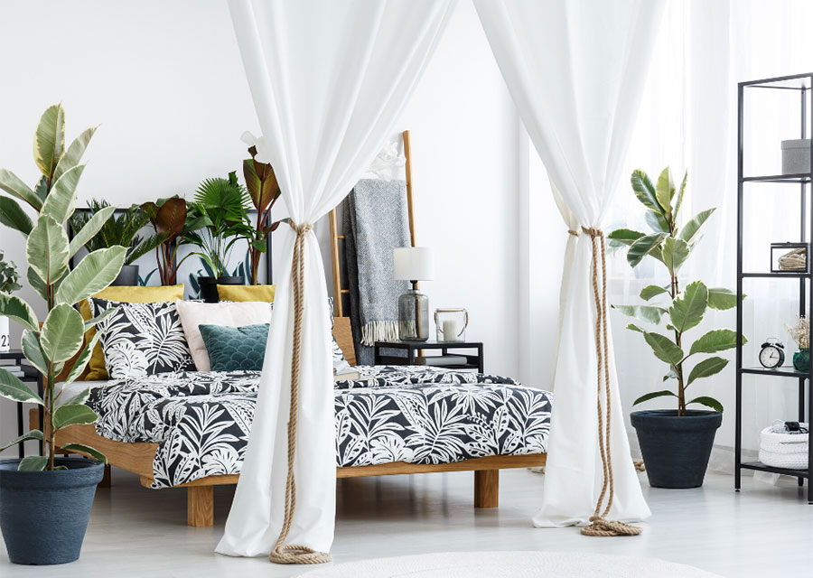A white bedroom with a half canopy bed decorated with floral print sheets and pillows, and surrounded by large house plants.